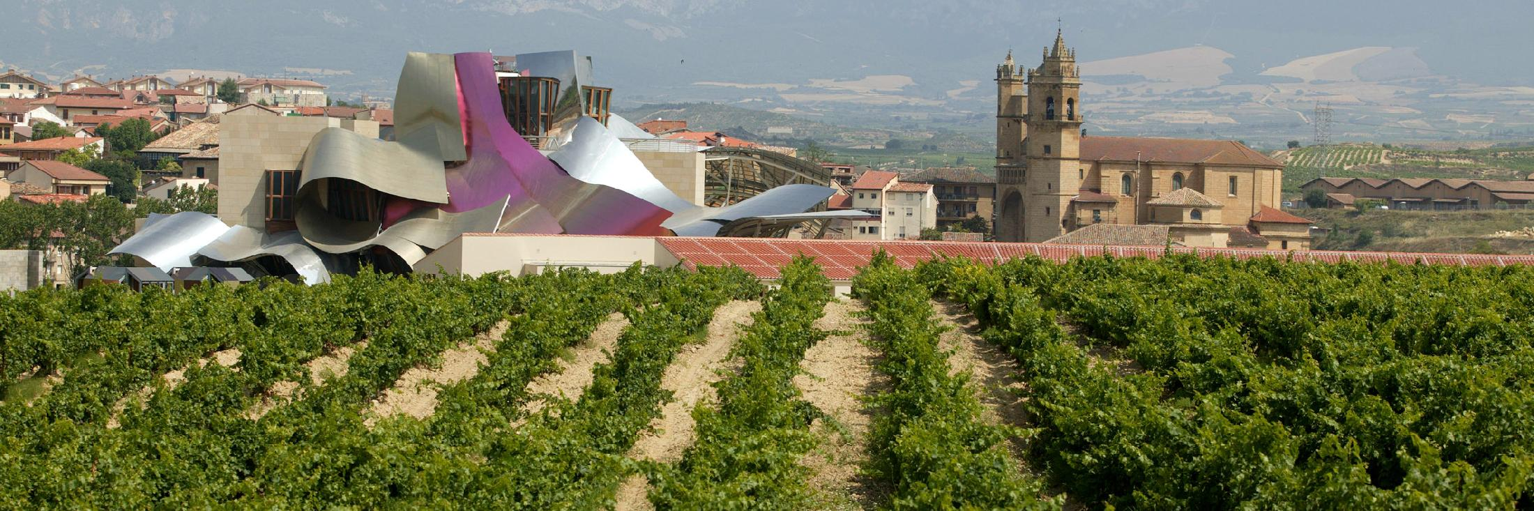Rioja routes, wine and gastronomy